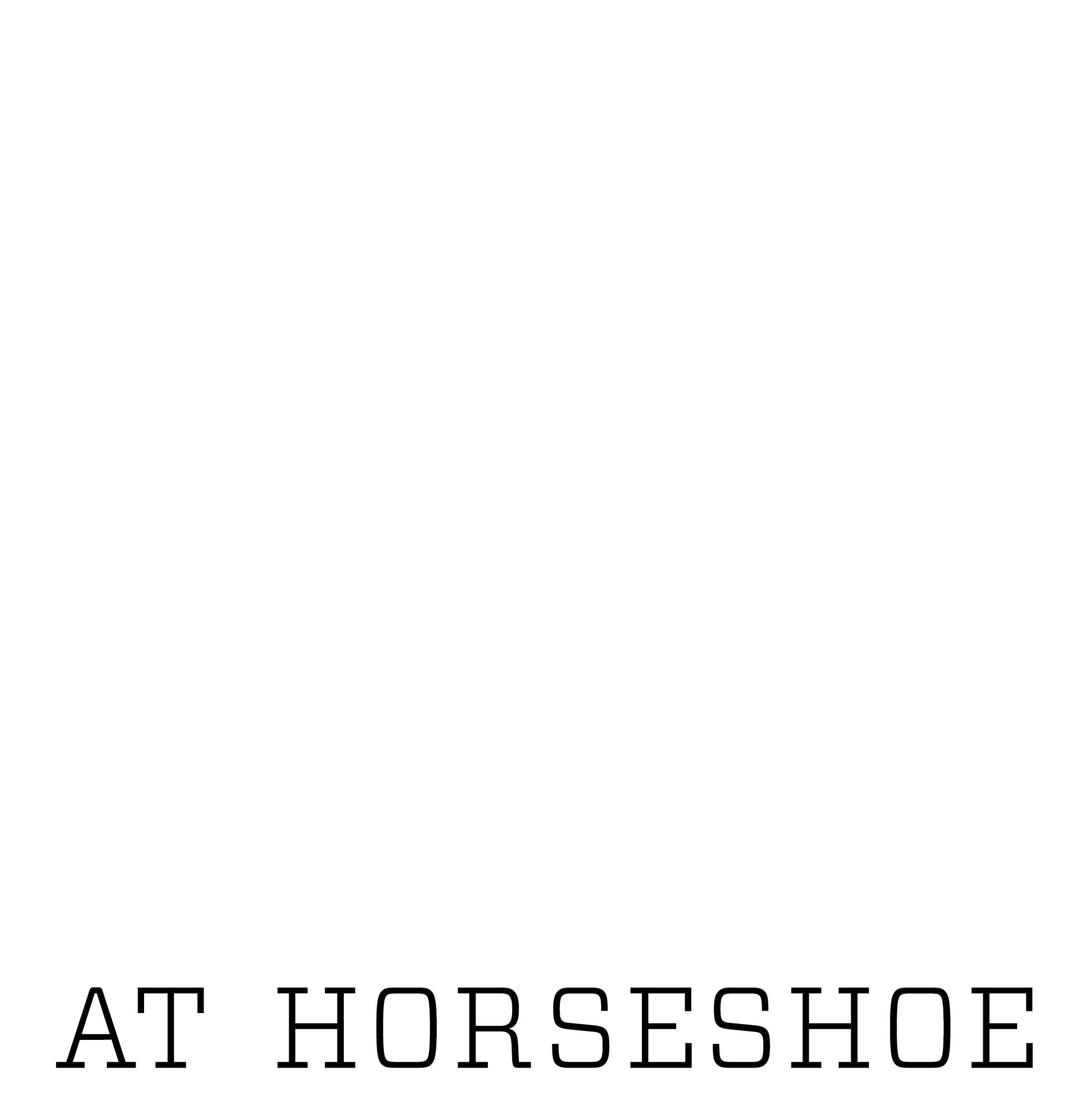 Jazz on the Mountain logo WHITE